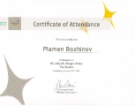plamen_bozhinov_3